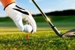 مسابقات لیگ دسته یک گلف کشور به میزبانی مسجدسلیمان برگزار می شود