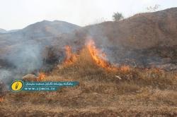 آتشسوزی گسترده مراتع در مسجدسلیمان + تصاویر