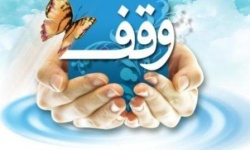 رئیس اداره اوقاف و امور خیریه مسجدسلیمان:به لطف خداوند مقوله وقف در حال نهادینه شدن می باشد