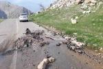 وقتی از دل آسفالت جاده ها در اندیکا چشمه آب فوران می کند